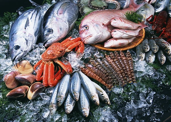 Can seafood spread novel coronavirus?