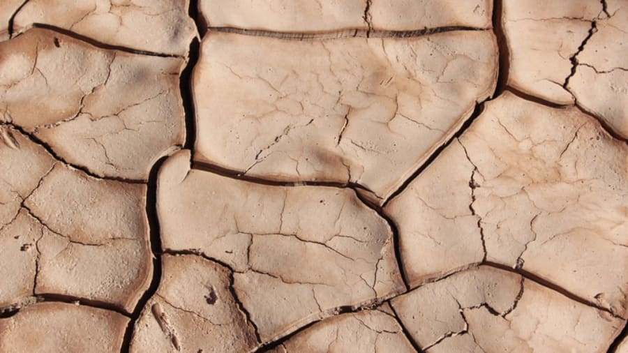 Dry and cracked dirt