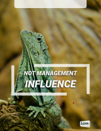 Not Management, INFLUENCE