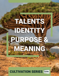 Talents, Identity, Purpose & Meaning