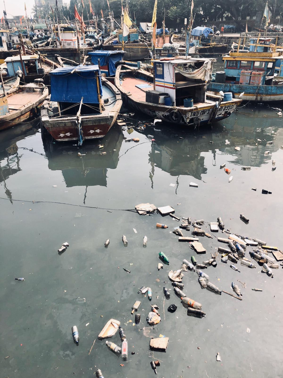 Pollution at the fish market