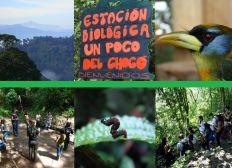 Naturschutzarbeit im ecuadorianischen Bergregenwald