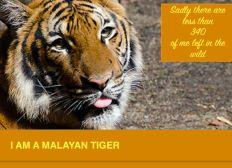 Help Malayan Tigers etc.