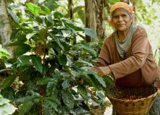 Supporting the economic autonomy of the indigenous Matagalpan women in Nicaragua