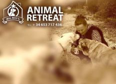 Big Reds Animal Retreat - Non Profit