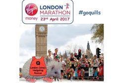 Quills' London Marathon Challenge 2017