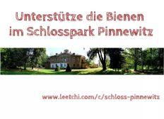 Ein Zuhause für Bienen im Schlosspark Pinnewitz