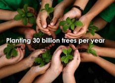 plant a 30 billions trees.
