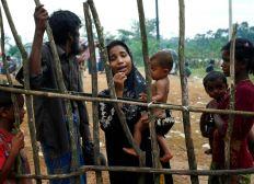 Myanmar (Burma) Appeal