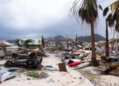 Cagnotte d'aide pour les victimes d'Irma