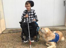un véhicule adapté pour Jordan et Hadzo son handi chien