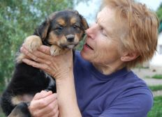 Helping animals from the Gostomel shelter