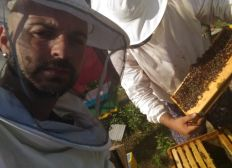 The Saving Bees Project
