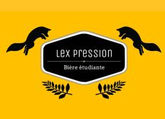 Start'Up Lex Pression