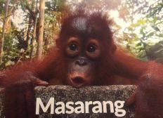 United for Masarang