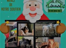 Solidaires avec Animal Protect 34