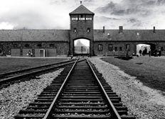Projet voyage à Auschwitz