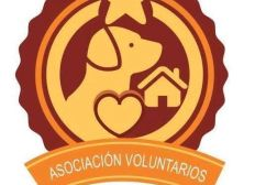 asociacion voluntarios animalistas