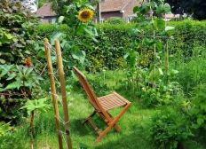 Micro ferme en Permaculture Agroecologie