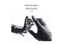 Publication de mon premier roman RAIN BIRDS