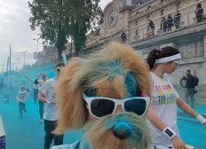 Team Jax Color Run Paris l'Auberge des 4 Pattes
