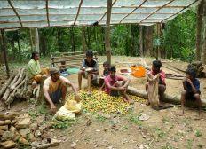 Construction d'une ferme écologique