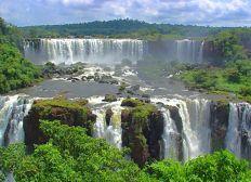 AmGo - Projekt Regenwald aufforsten