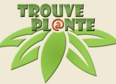 TrouvePlante Chantilly