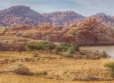 Ultra Trail, au coeur de l'Ennedi