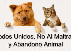 proteger y ayudar a los animales