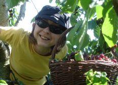 Projet agricole : les Petites Folies d'Amélie Priac