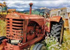 Businessplan für Landwirtschaft