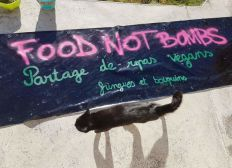 Aide au collectif Food Not Bombs de Quimper