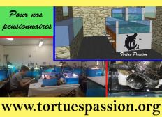 Association Tortues Passion