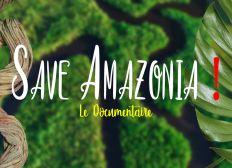 Qui peut sauver l'Amazonie ?