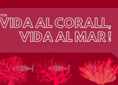Material Coral Vermell