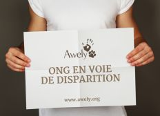 Soutien à Awely, ONG en voie de disparition