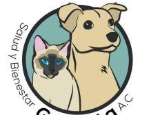 Refugio Animalitos Rescatados