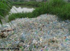 Ecoboat from plastic bottles