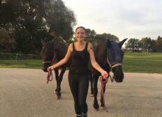 Gnadenbrot für Pferde