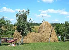 Traditional Romanian Camping&Lounge