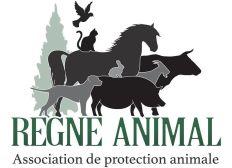Pour nos amis les animaux