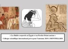 """Organisation d'un colloque scientifique """"Les fluides corporels en Egypte et au Proche-Orient anciens"""""""