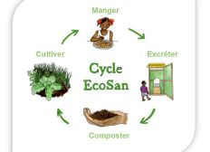 Des latrines ECOSAN pour des villageois togolais