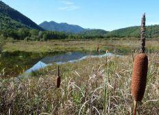 Préserver une terre écologique