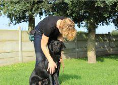 Offrez un chien guide à un non-voyant avec RTL !