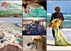 Help us to save Cabo Verde from plastic pollution