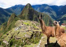 Machu Picchu , Amérique du Sud .....Vamos !