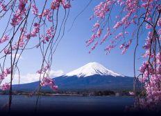 Déménagement au Japon moving to Japan