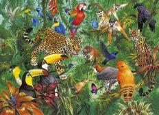 Biodanza por la Biodiversidad